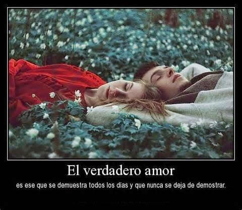what is love - Que es el amor 2015 - 2016