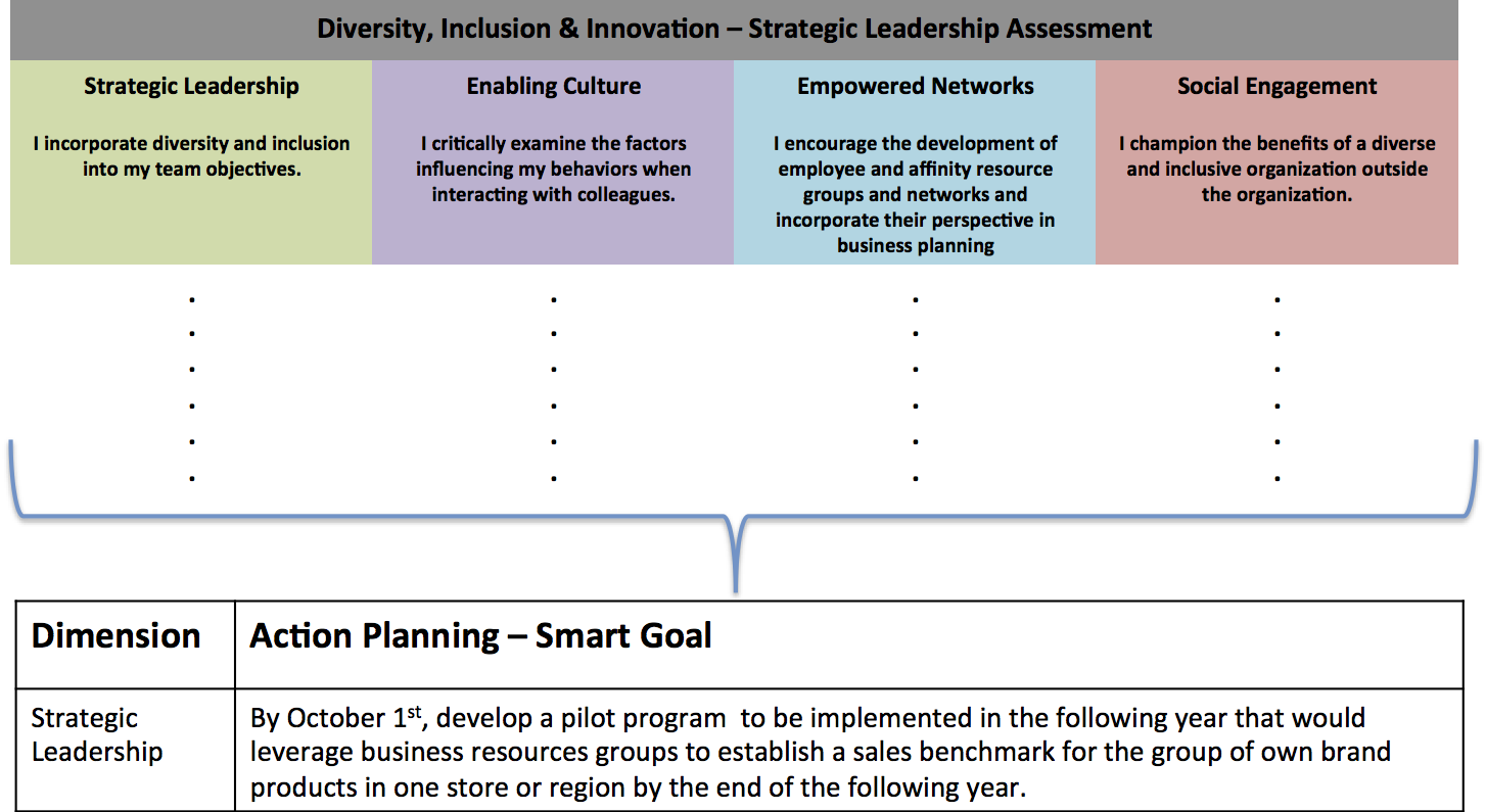 Diversity, Inclusion & Innovation - Strategic Leadership Assessment tool updated!
