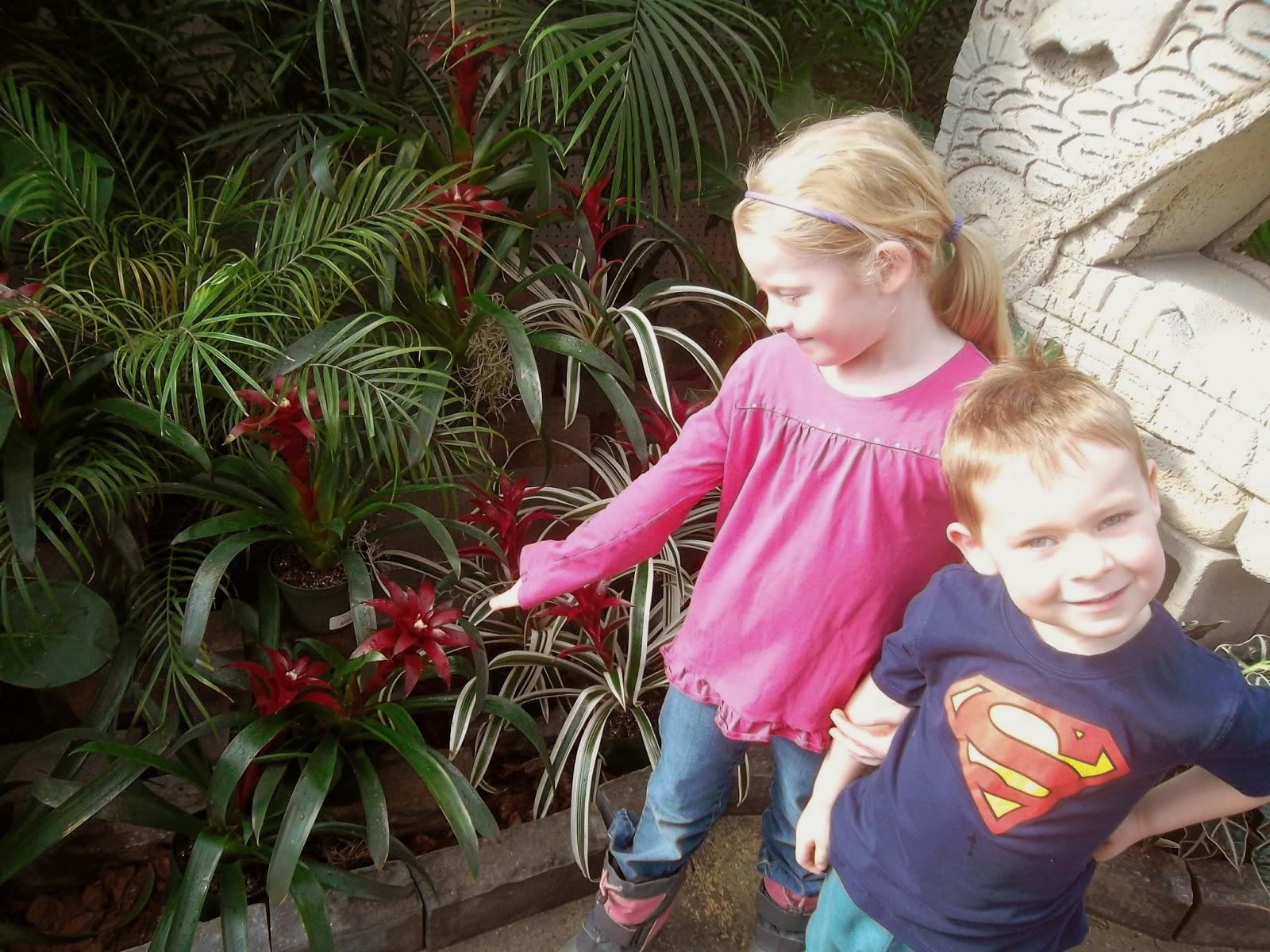 Roxanne et j r my visites aux papillons du jardin hamel for Jardin hamel papillon 2016