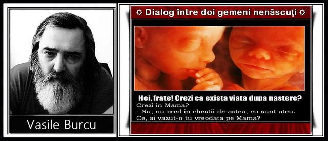 Dialog între doi gemeni nenăscuţi