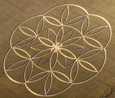 Geometría Sagrada al Descubierto Nassim-haramein-fisica-astronomia-geometria-unen-sabiduria-naturaleza-interior-infinita_7_817975
