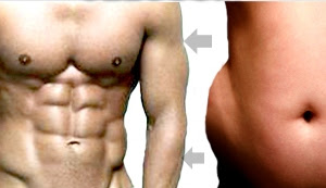 fat to muscle mass
