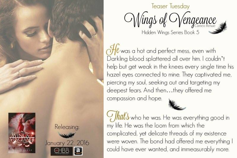 hidden wings hidden wings series book one