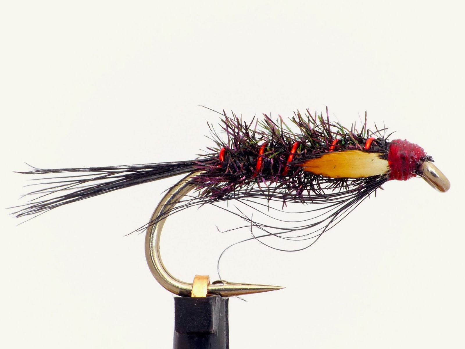 Black Diawl Bach with red rib