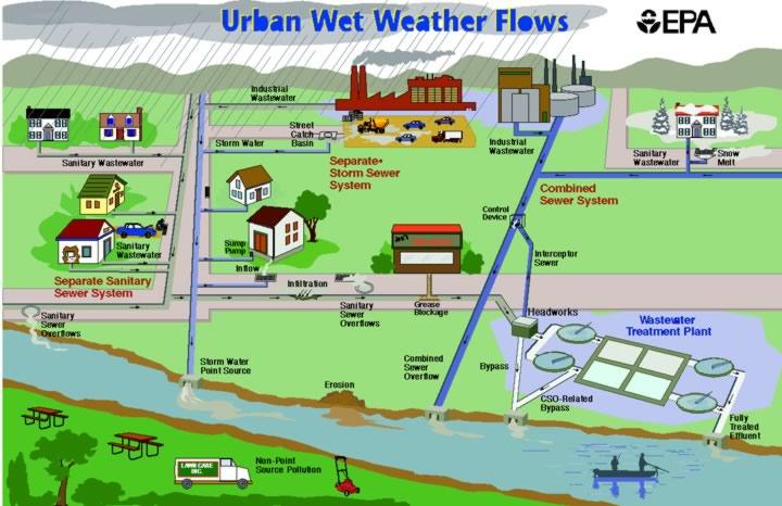 Amari S Sustainability Blog Water Conservation Methods