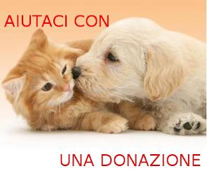 Donazioni: