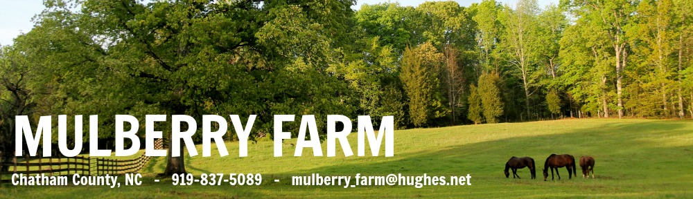 Mulberry Farm