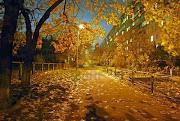 Una de otoño avenida de area de la ciudad noche otono