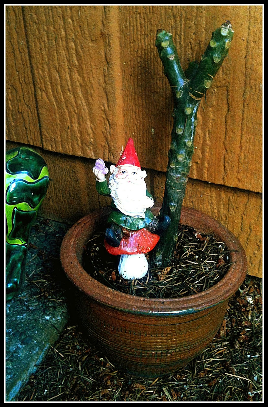 Meet Lish McBride\'s Gnome Army (& Necromancer giveaway!) - The ...