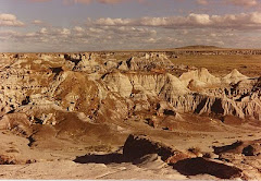 Badlands, Petrified Forest