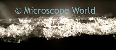 metallurgical microscope adhesive image