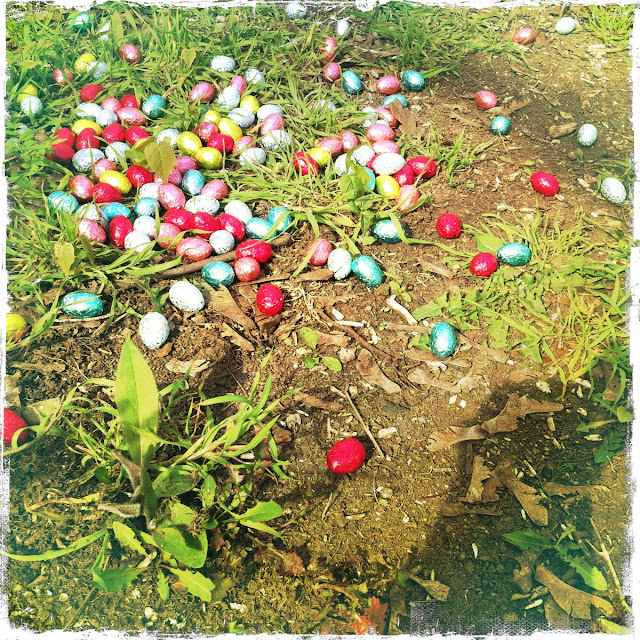 chocolate eggs, colorful eggs, easter, grass, egg hunting