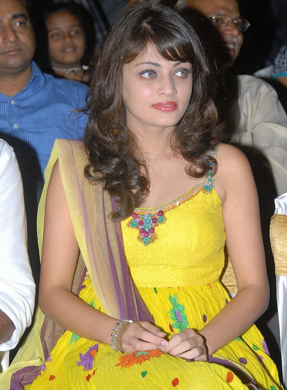 Actress Sneha Ullal Hot Photos Photoshoot images