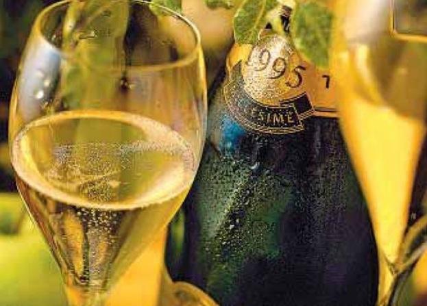Maigrir avec la m thode montignac phase 1 - Boire une coupe de champagne enceinte ...