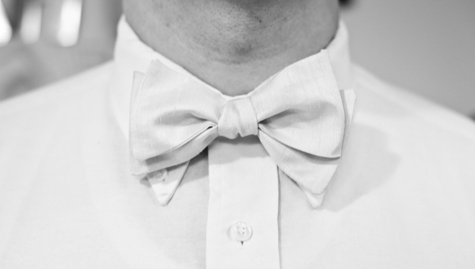 Chic Geek Bow Ties