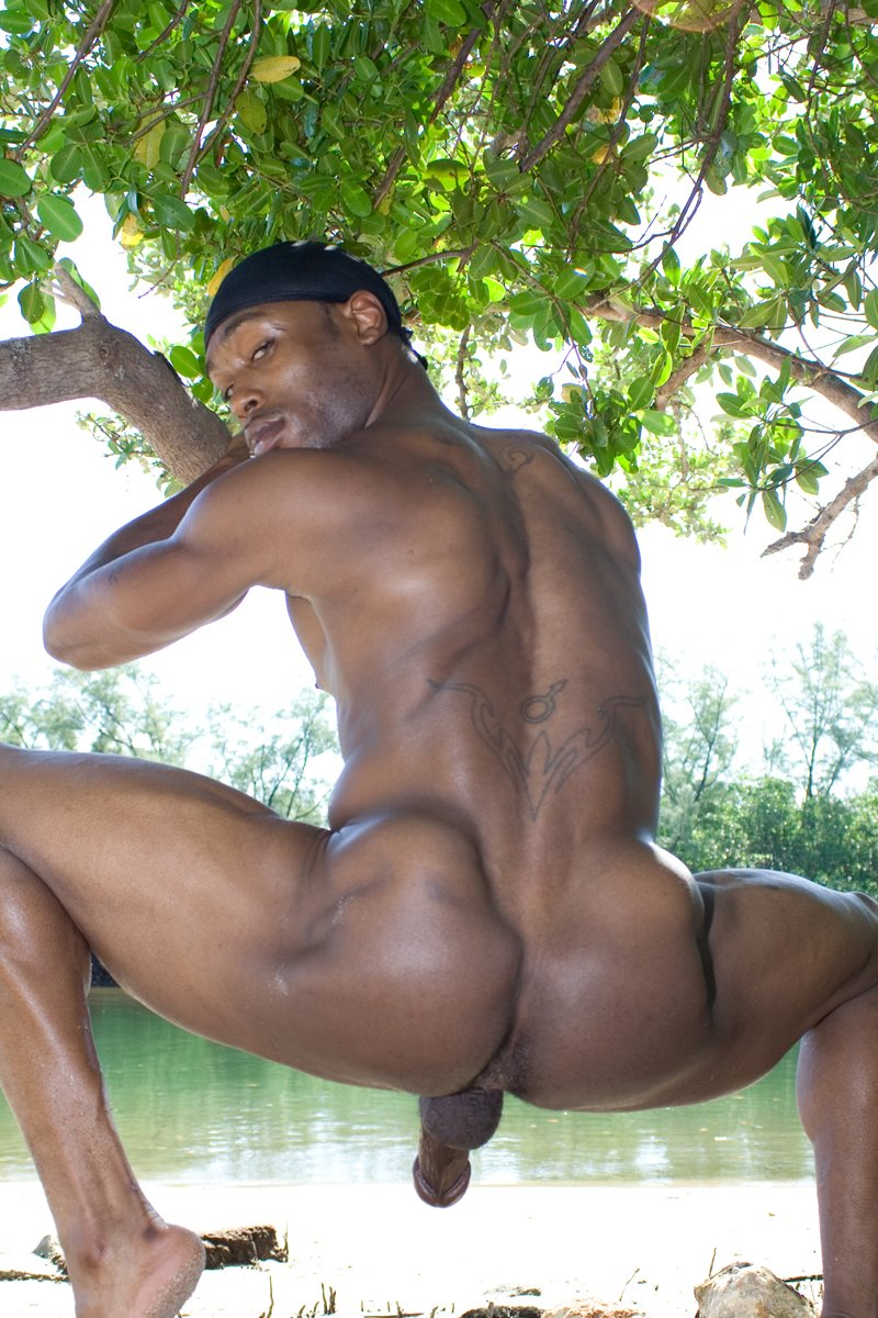 black young models posing nude