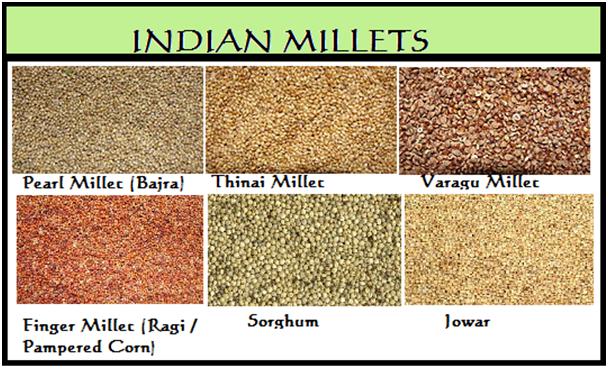 Millets saamai arisi kozhukattai steamed little for Soil meaning in urdu