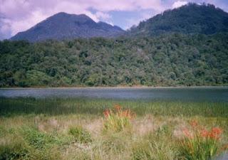 Tour Packages : Surabaya,Bromo Tour,Malang Tour,Ijen Tour,Yogyakarta Tour,Rafting,All Java Tours