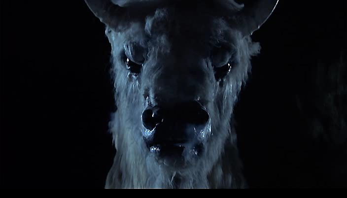 Filmes segregados: O Grande Búfalo Branco (The White ...