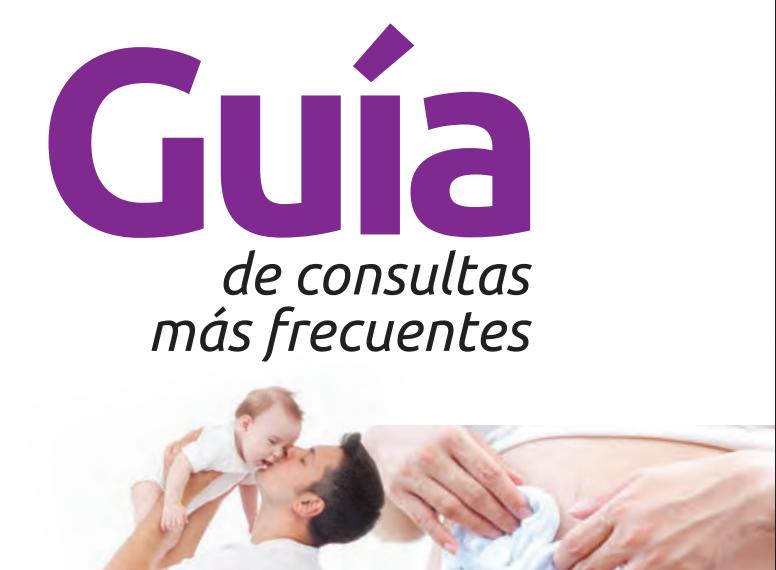GUÍA DE CONSULTAS MAS FRECUENTES