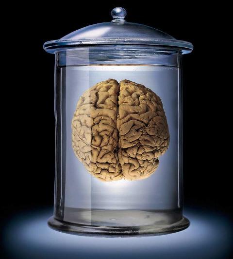 Brain Jar4