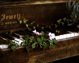 Jewett Boston Vintage Piano Flowers on Keyboard HD Wallpaper
