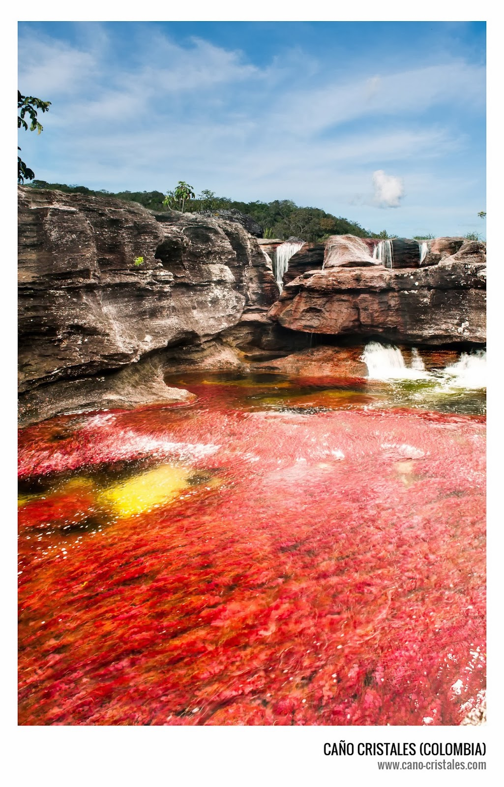 Caño Cristales, impresionante río en Colombia