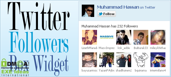 Simple Twitter Followers Widget Like Facebook For Blog And Website