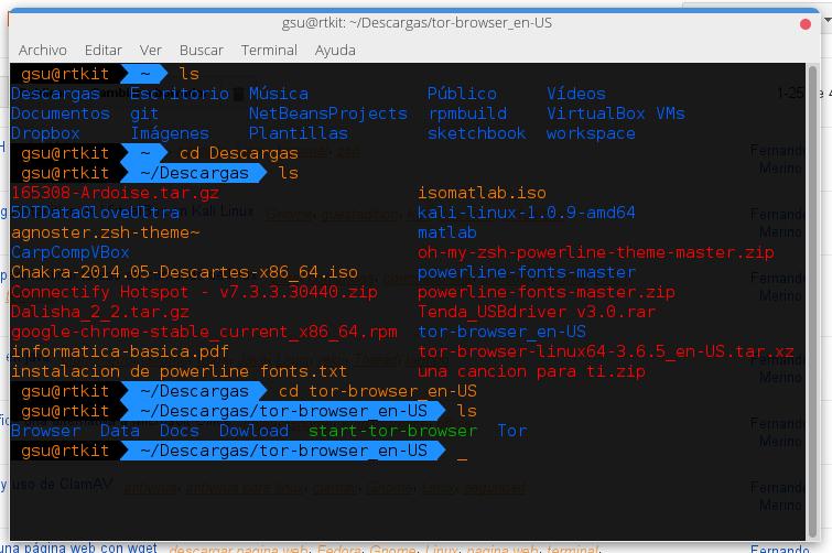 Instalar ZSH en kali Linux