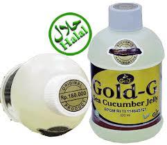 cara menjadi agen jelly gamat gold
