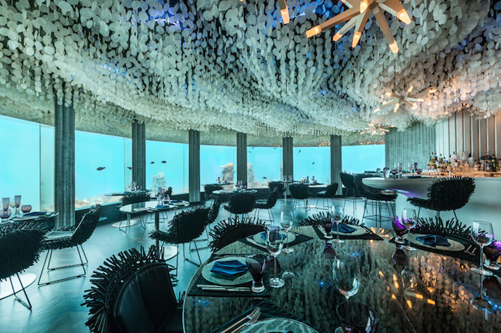 The space used to be a nightclub, but now it's been transformed into an upscale restaurant located six meters underneath the waterline. - This Is The Most Amazing Restaurant On Earth, Only It Isn't ON The Earth.