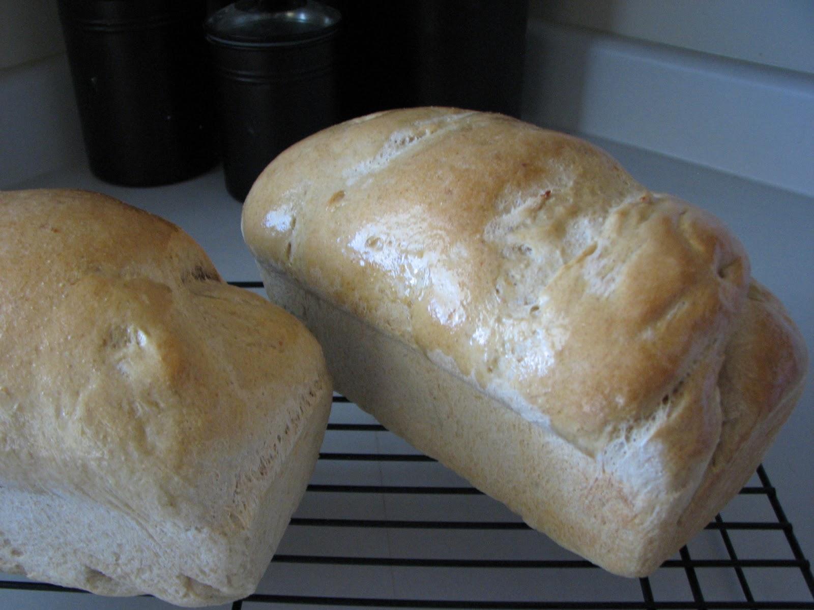 dough kneading machine walmart
