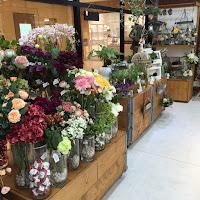 川崎ラゾーナ造花