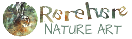 RareHare Nature Art