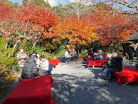 入場者には抹茶と茶菓子のサービスがあり、茶菓子は「大河内山荘」と刻印されたモナカである。