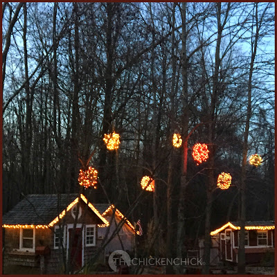 For little more than $3.00 each, barren trees in the yard can be transformed into giant Christmas trees!