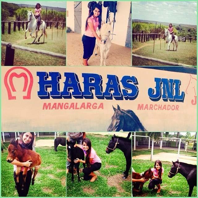 HARAS JNL