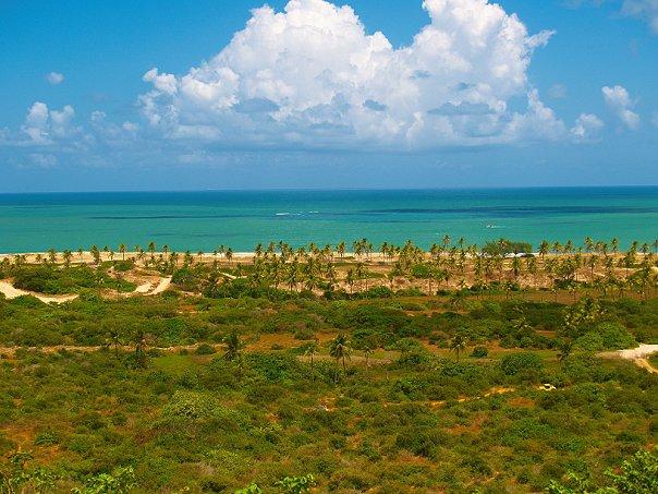 бразилия дикий пляж