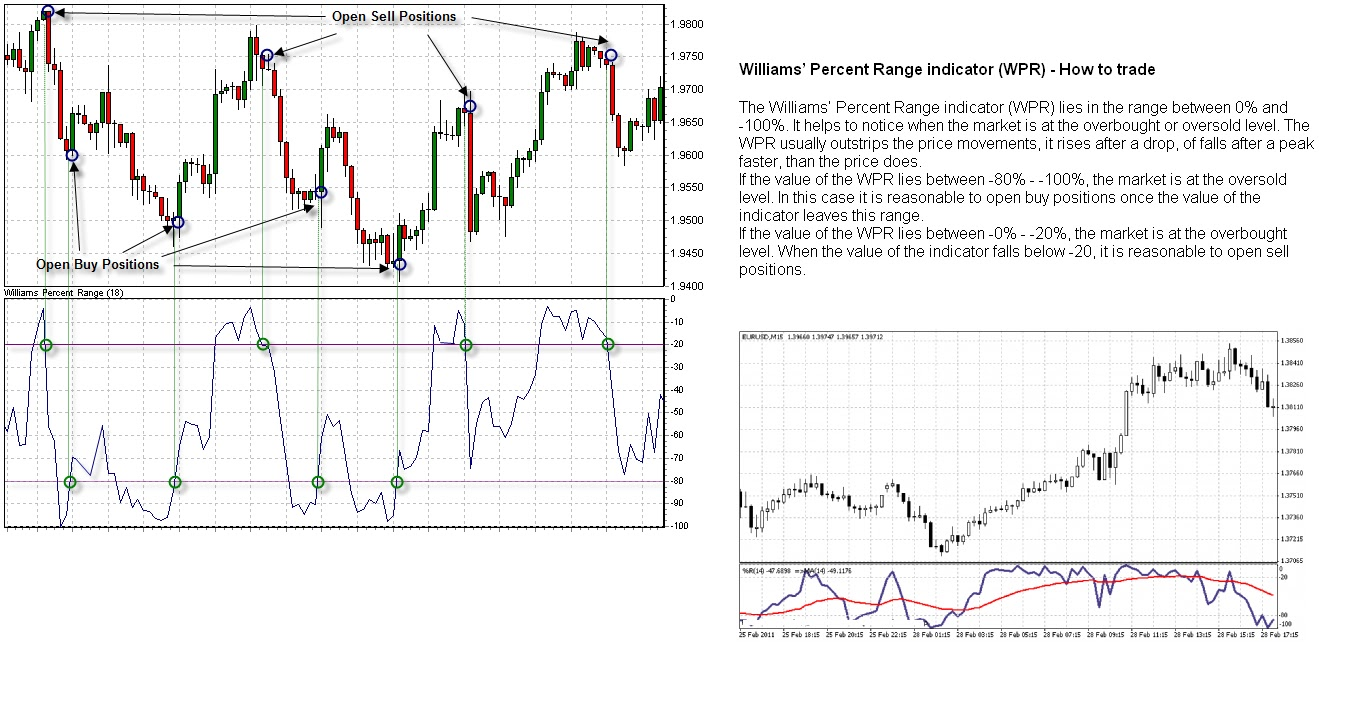 Williams percent range trading strategy