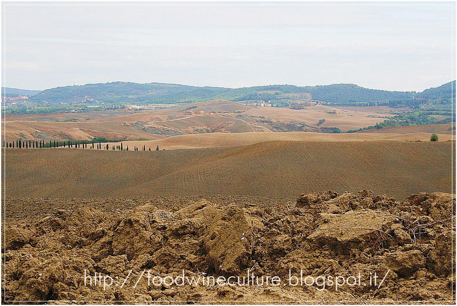 Terra Toscana
