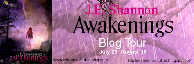 Launch Party: Awakenings by JE Shannon
