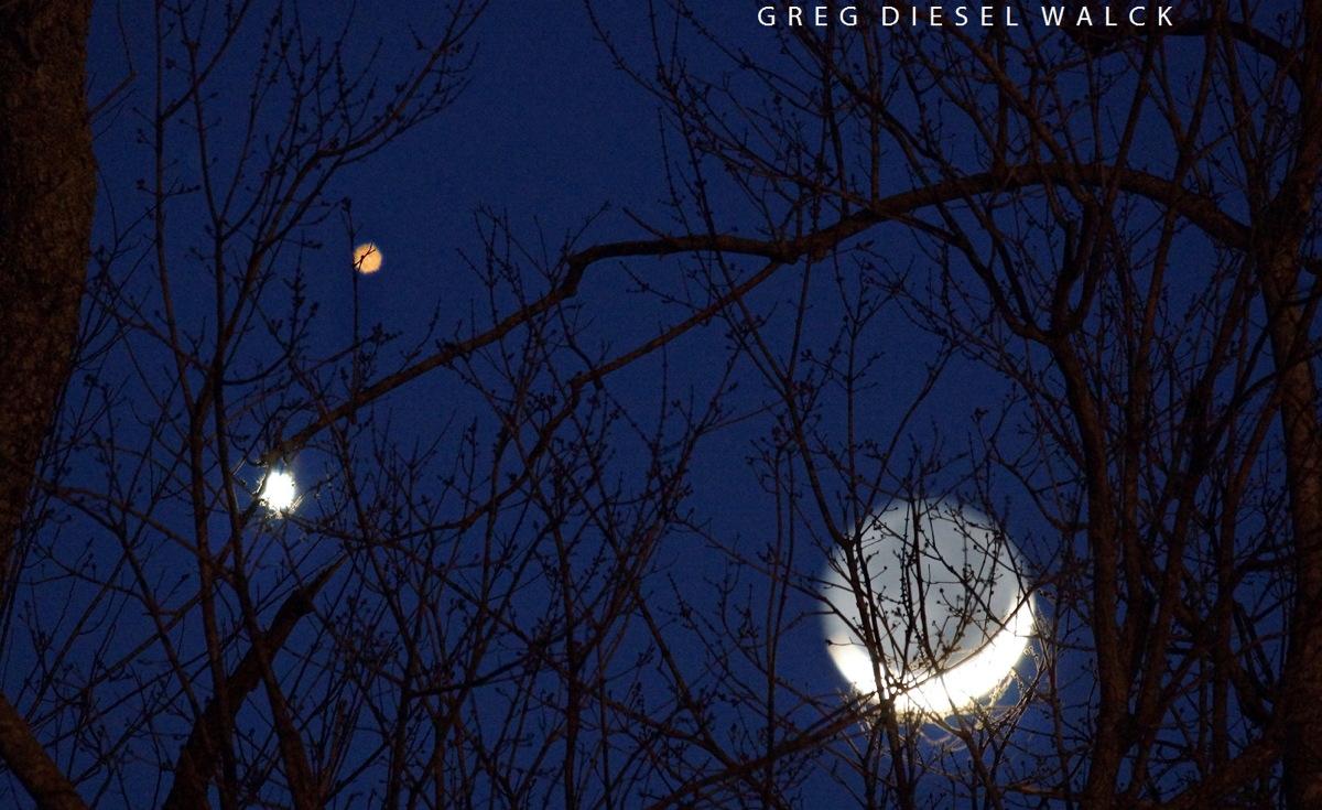 [Ftvh] Một hình tam giác tạm thời được tạo ra bởi hành tinh Kim, hành tinh Hỏa và Mặt Trăng trên bầu trời chiều bị mắc trên những cành cây ở bắc Carolina ngày 20/2 vừa qua. Tác giả : Greg Diesel Walck.