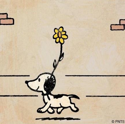 http://en.wikipedia.org/wiki/Snoopy