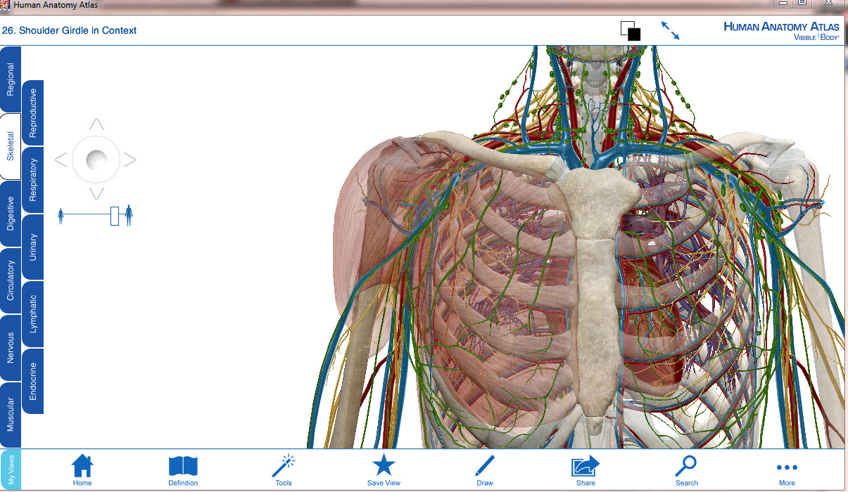 Visible Body Human Anatomy Atlas 301 Portable