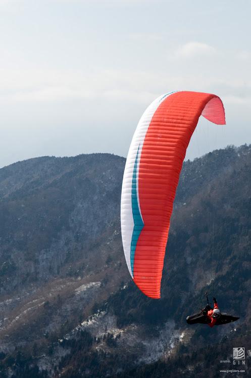 boomerang 8