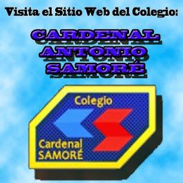 COLEGIO CARDENAL ANTONIO SAMORÉ