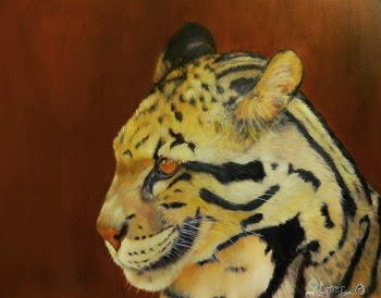 Tarak,a Clouded Leopard portrait in oils