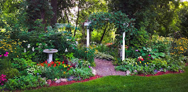 Pastor Tim's Garden - Click on Picture