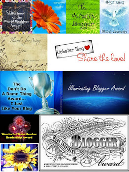 Awards Received Collage