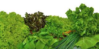 Confira as dicas de alimentação da nutricionista do Spa Med Sorocaba Campus